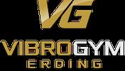 VibroGym Shop Logo